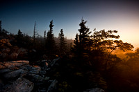 Day 3 - Sunrise at Dolly Sods